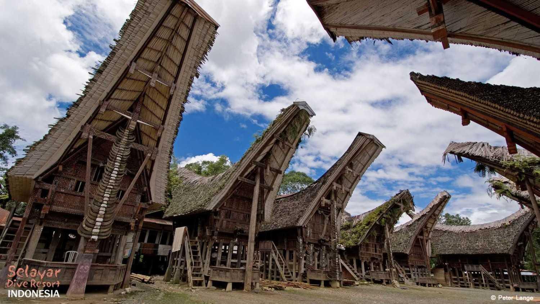 Rumah suku toraja (Sumber: www.selayar-dive-resort.com)