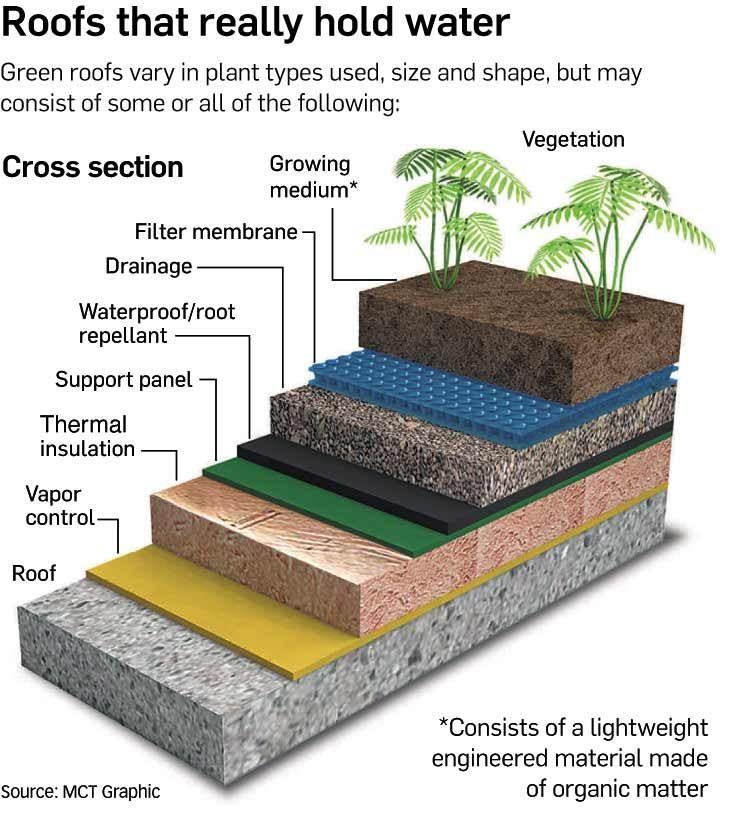Cara membuat rooftop garden sendiri [Sumber: MCT Graphic]
