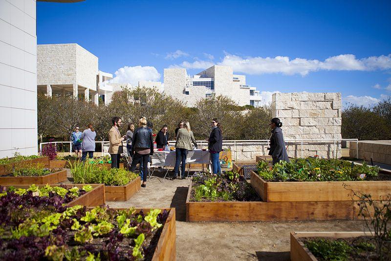 Desain rooftop garden minimalis yang unik karya Julia Sherman [Sumber: food52.com]