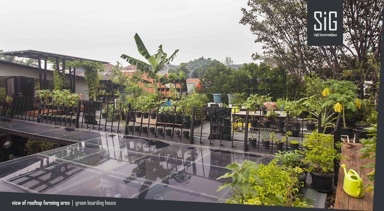 Berkebun di dak Rumah Beranda - Green Boarding House karyasigit.kusumawijaya | architect & urbandesigner [Sumber: arsitag.com]
