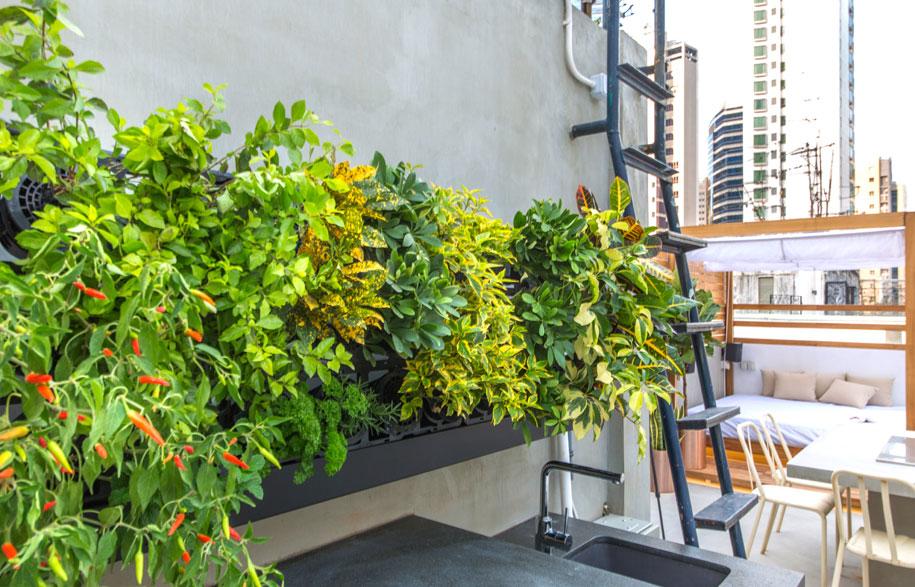 Desain taman atap eco-smart studio [Sumber: habitusliving.com]