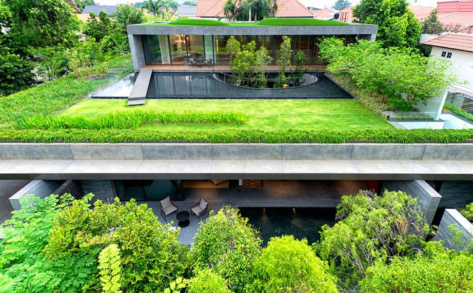 Tanaman hias atap untuk desain organik [Sumber: inspirationseek.com]